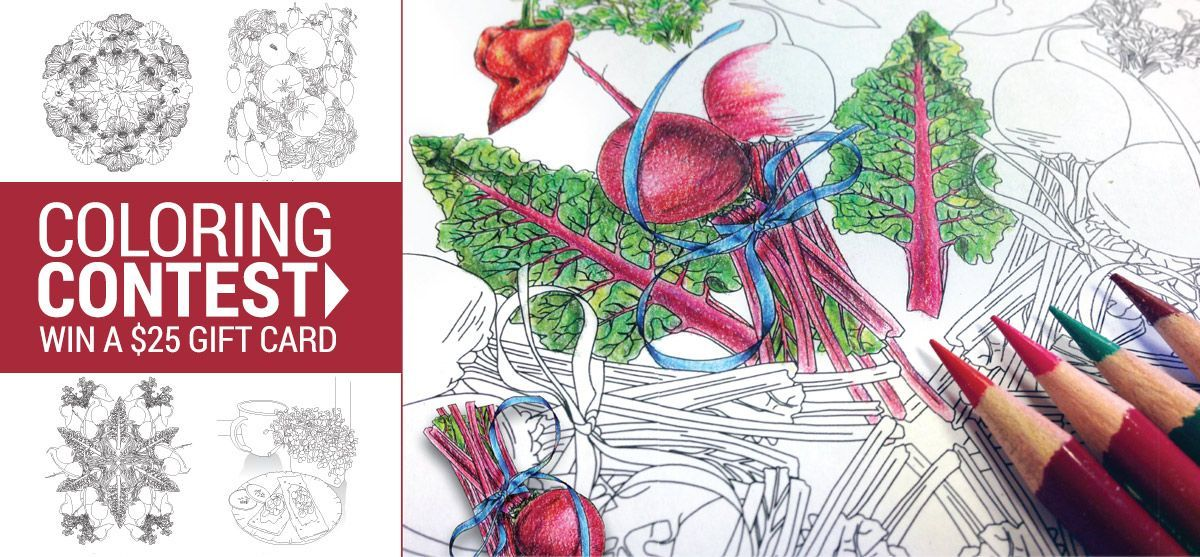 coloring-book-feature2