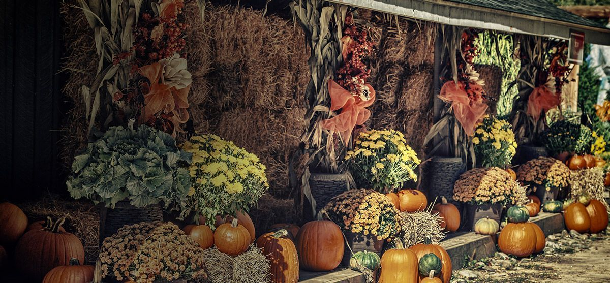 fall-decorations-feature