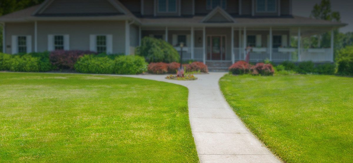 protect-your-lawn-feature